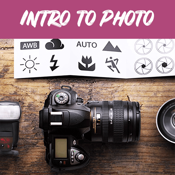 Adult Intro to Photography